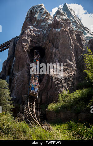 Expedition Everest - Stock Photo