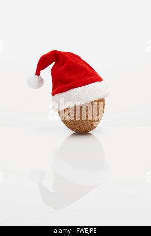Coconut with Christmas hat - Stock Photo