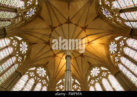 A colour rendition of the roof of the chapter house in Salisbury cathedral - Stock Photo