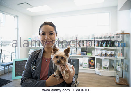 Portrait smiling veterinarian holding small dog in clinic - Stock Photo