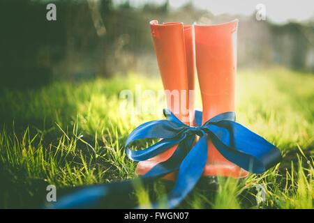 Close-Up Of Rubber Boot Tied Up With Blue Ribbon - Stock Photo