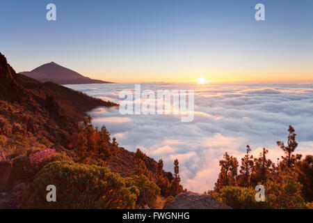 Pico del Teide at sunset, National Park Teide, UNESCO World Heritage Site, Tenerife, Canary Islands, Spain, Europe - Stock Photo