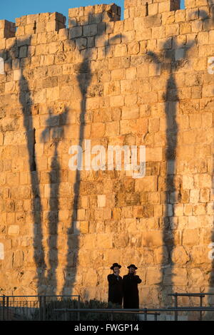 Two Orthodox Jewsh with palm tree shadows in background along the Old City walls, Jerusalem Old City, Israel, Middle - Stock Photo