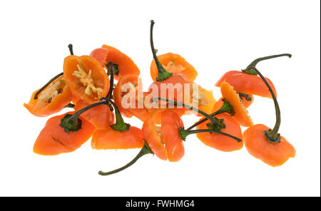 Sliced orange habanero peppers showing the tops and stems isolated on a white background. - Stock Photo