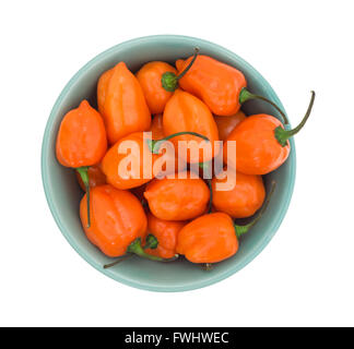 Top view of a bowl of orange habanero peppers isolated on a white background. - Stock Photo