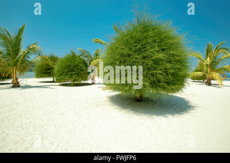 Scenic Malibu beach on Koh Phangan, Thailand - Stock Photo