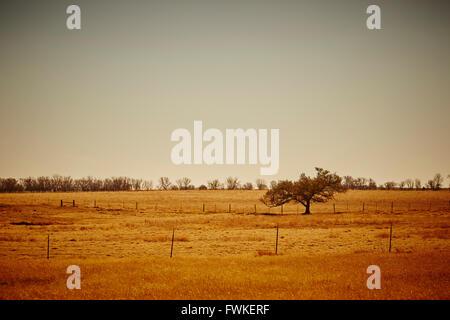 Ranch land near Elk City, Oklahoma, USA - Stock Photo