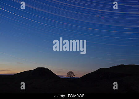 A view at night above Sycamore Gap on Hadrian's Wall in Northumberland National Park with star trails in the clear - Stock Photo