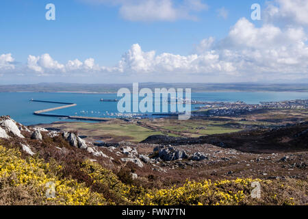Holyhead port and town seen from Holyhead Mountain in spring. Holy Island, Isle of Anglesey (Ynys Mon), Wales, UK, - Stock Photo