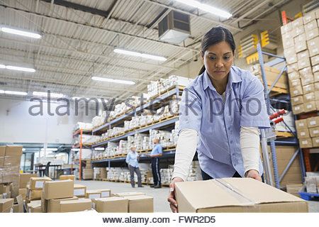 Female worker moving boxes in warehouse - Stock Photo