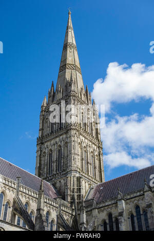 Salisbury Cathedral showing Britain's tallest spire, Wiltshire, England, UK - Stock Photo