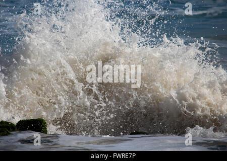 Indian Ocean waves breaking on  basalt rocks   at  Ocean Beach Bunbury Western Australia send muddy spray high into - Stock Photo
