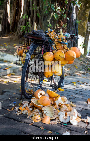 coconut vendor in Fort Galle, Sri Lanka, Asia - Stock Photo