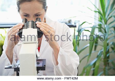 Female scientist using microscope in laboratory - Stock Photo