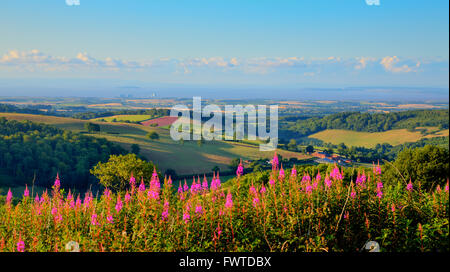 Somerset countryside view towards Hinkley Point Nuclear Power station uk - Stock Photo