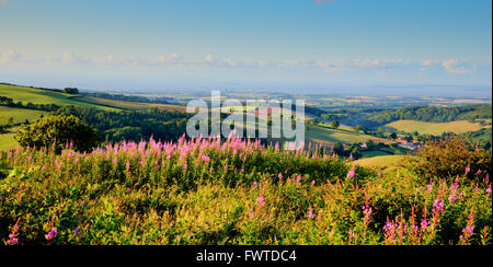 Somerset countryside towards Hinkley Point Nuclear Power station from Quantock Hills - Stock Photo