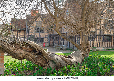 The rear of Hall's Croft, the substantial Jacobean home of Shakespeare's daughter, Susanna, and her husband Dr John - Stock Photo