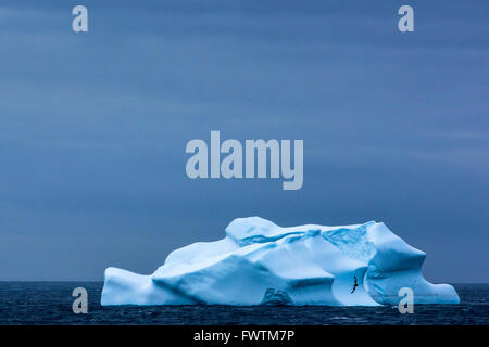 Giant Iceberg floating at sea near Cooper Bay, South Georgia - Stock Photo