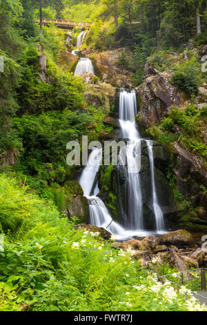 Triberg Falls is one of the highest waterfalls in black forest, Germany - Stock Photo