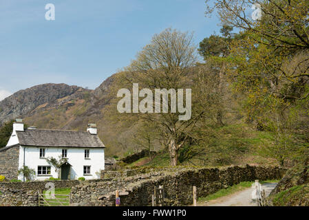 Yew Tree Cottage, a traditonal white farm house with a slate roof near Trover and Coniston Water in the Lake District, - Stock Photo