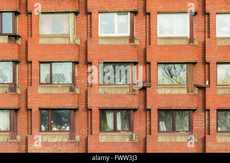 Several windows in row on facade of urban apartment building front view, St. Petersburg, Russia - Stock Photo