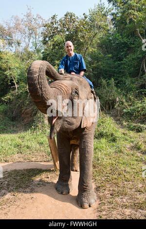 Tourist elephant trekking in northern Thailand - Stock Photo