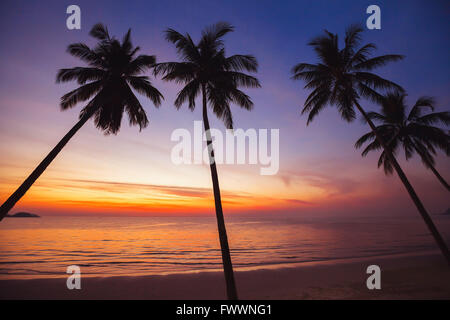 Paradise Tropical Beach At Sunset Exotic Landscape With Silhouettes Of Palm Trees