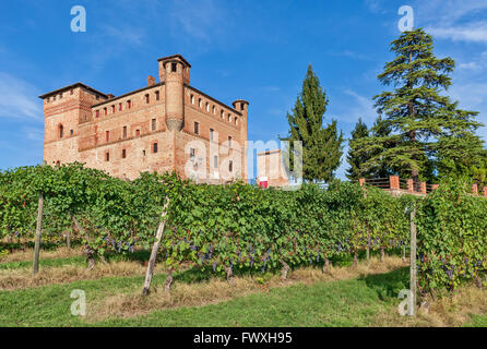 Old medieval castle and green vineyards in Piedmont, Northern Italy. - Stock Photo