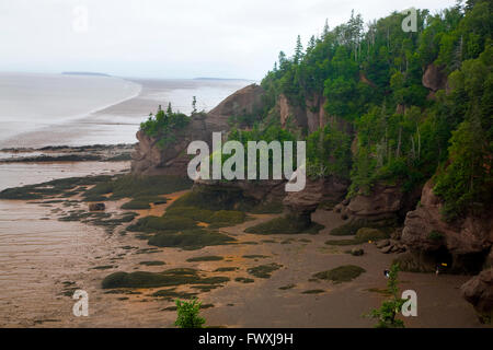 View of Hopewell Rocks in the Bay of Fundy - Stock Photo