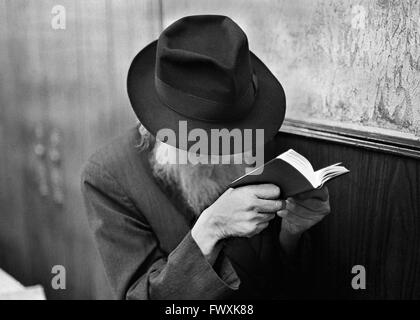 Old Hasidic Jew reads his bible at the Chabad-Lubavitch world headquarters in Crown Heights, Brooklyn, NY. - Stock Photo