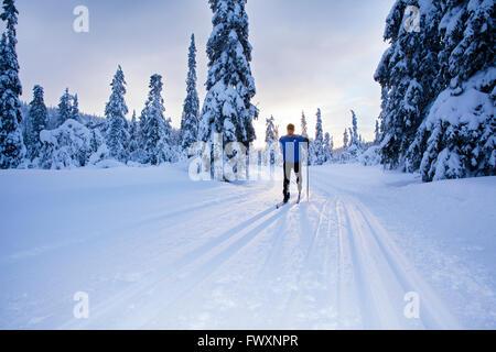 Sweden, Dalarna, Salen, Mature man cross-country skiing at sunrise - Stock Photo