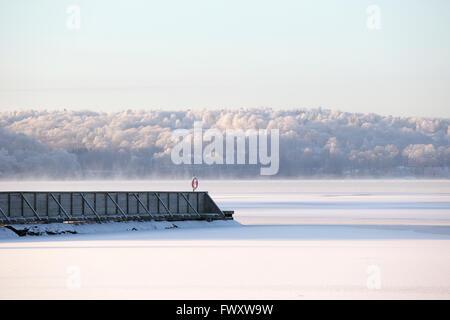 Sweden, Vastergotland, Lerum, Lake Aspen and forest in snow - Stock Photo