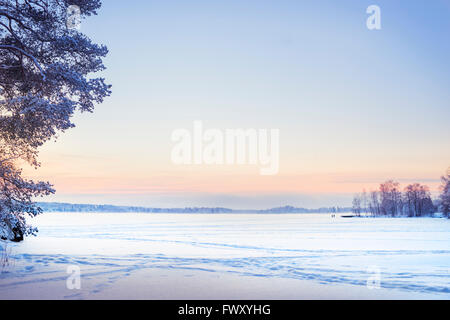 Finland, Pirkanmaa, Tampere, Winter scene with snow plain at dusk - Stock Photo