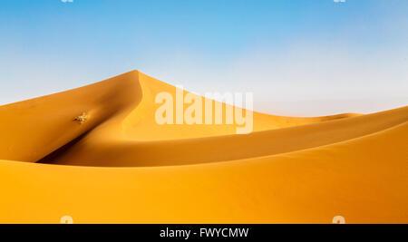 Sahara dunes  Morocco, Erg Chigaga - Stock Photo