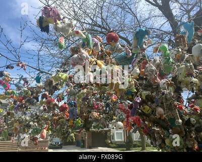 New York, USA. 06th Apr, 2016. The cherry tree Eugene Fellner has decorated with stuffed animals in front of his - Stock Photo