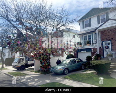 New York, USA. 06th Apr, 2016. The cherry tree Eugene Fellner has decorated with stuffed animals seen in front of - Stock Photo