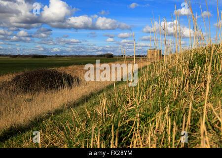 Marshland landscape on flat between Bawdsey and Alderton, Suffolk, England, UK from coastal defence dyke wall - Stock Photo