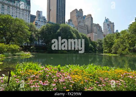 Central Park NYC, New York, USA - Stock Photo
