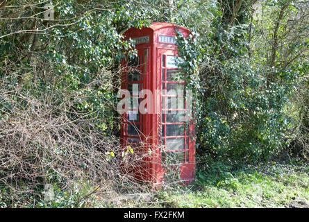 Overgrown red telephone box - Stock Photo