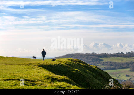 Little Solsbury Hill, Batheaston, Somerset, UK weather. 10th April 2016. A dog walker  admires the view from the - Stock Photo