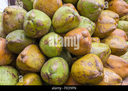 Closeup to Green Coconuts in India at a Market Stand - Stock Photo