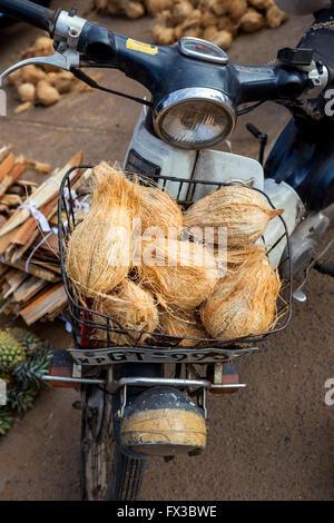 Motorbike wit coconuts for sale, Colombo, Sri Lanka, Asia - Stock Photo