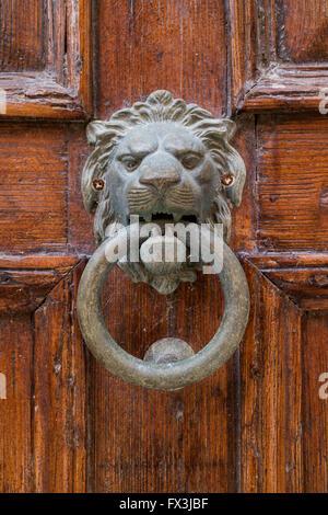 Brass lion head knocker on an old door
