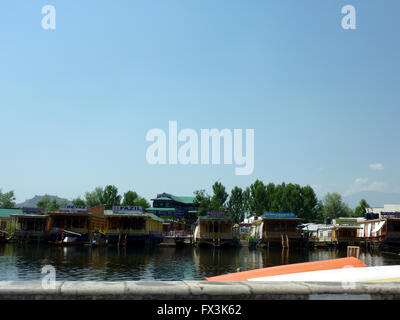 House boats, Dal Lake, Srinagar, Kashmir, in a line facing Boulevard Road and floating gardens behind, open portion - Stock Photo