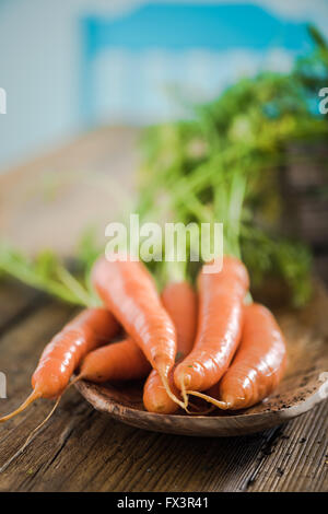 Fresh carrot from home garden on wooden farmhouse table in sunny kitchen - Stock Photo