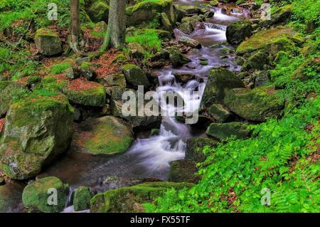 Ilsewasserfall im Harz - waterfall river Ilse in Harz Mountains - Stock Photo