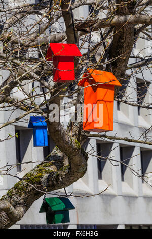 Colourful nesting boxes for all sizes of birds hanging in one tree - Stock Photo