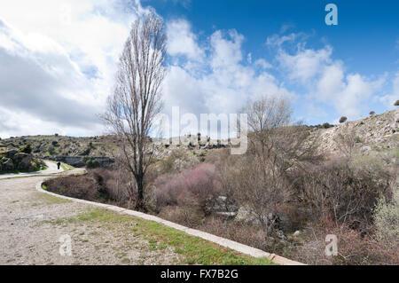 Riparian forest along the river Manzanares, Colmenar Viejo, Madrid, Spain - Stock Photo
