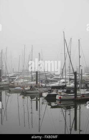 Boats moored at Ocean Village Marina, on a foggy April morning - Stock Photo