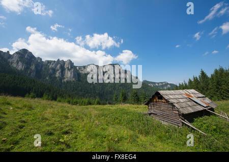 Old sheepfold cottage on the mountain (Romanian Carpathians) - Stock Photo